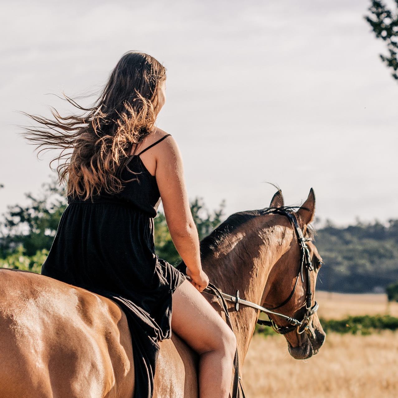 rando cheval haut verdon